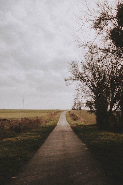 açık hava, ara, arazi içeren Ücretsiz stok fotoğraf