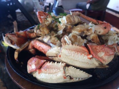 Kostenloses Stock Foto zu essen, fisch, krabbe