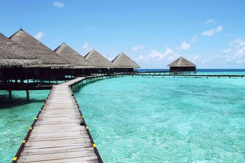 假日, 假期, 出門, 加勒比海 的 免費圖庫相片