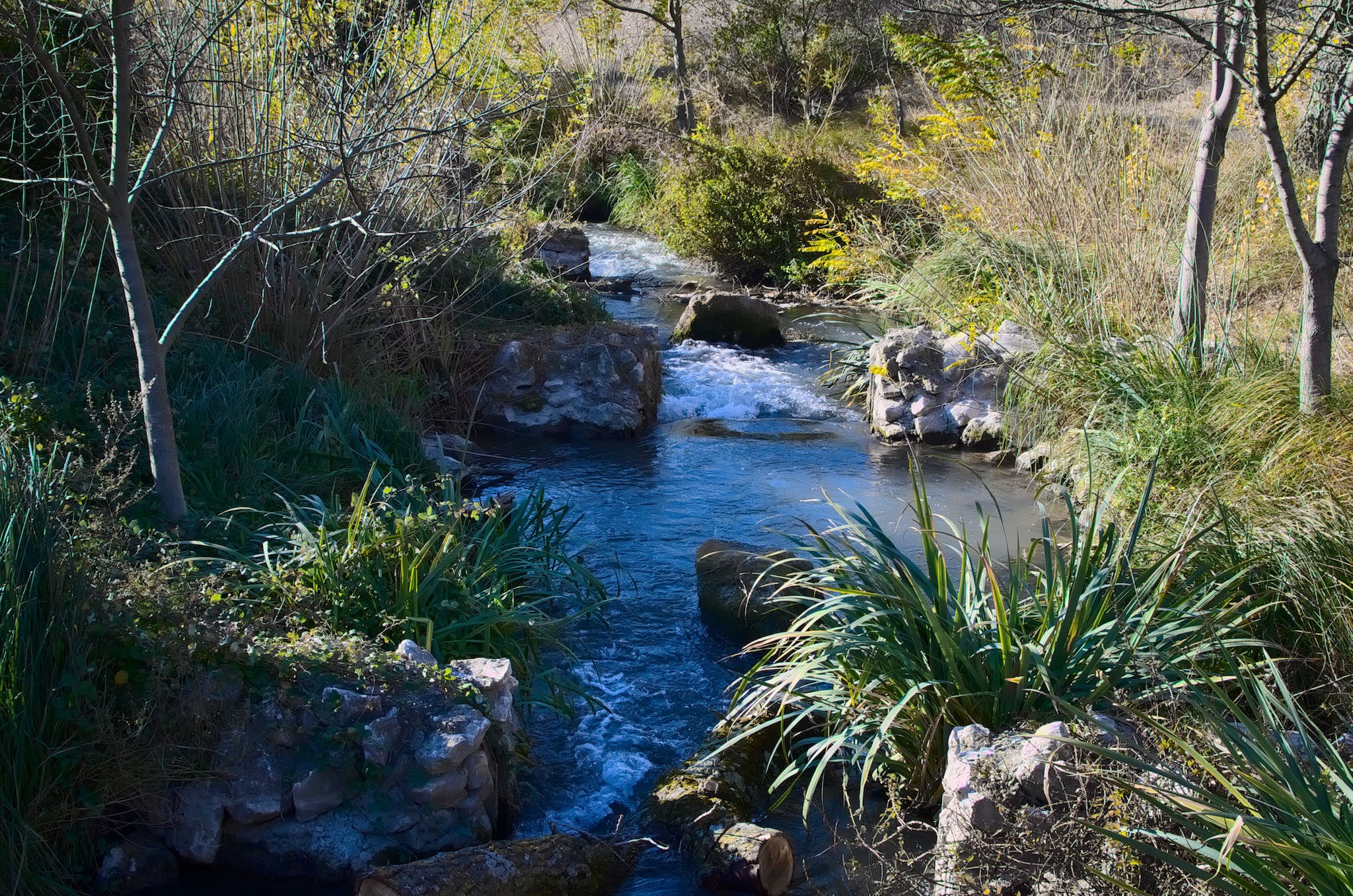 Free stock photo of eau, landscape, nature, river