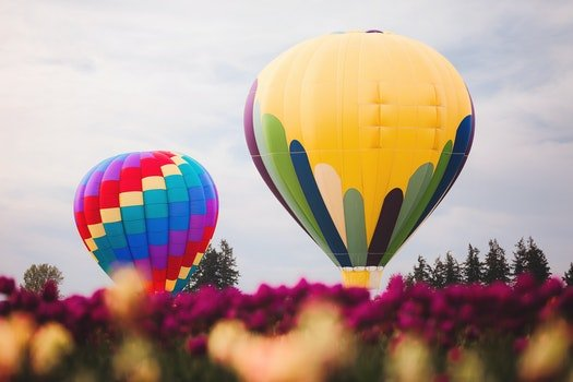 Two Assorted Color Hot Air Balloons