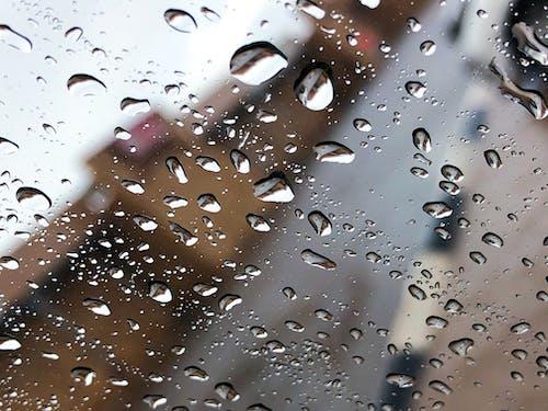 Free stock photo of glass, rain, water