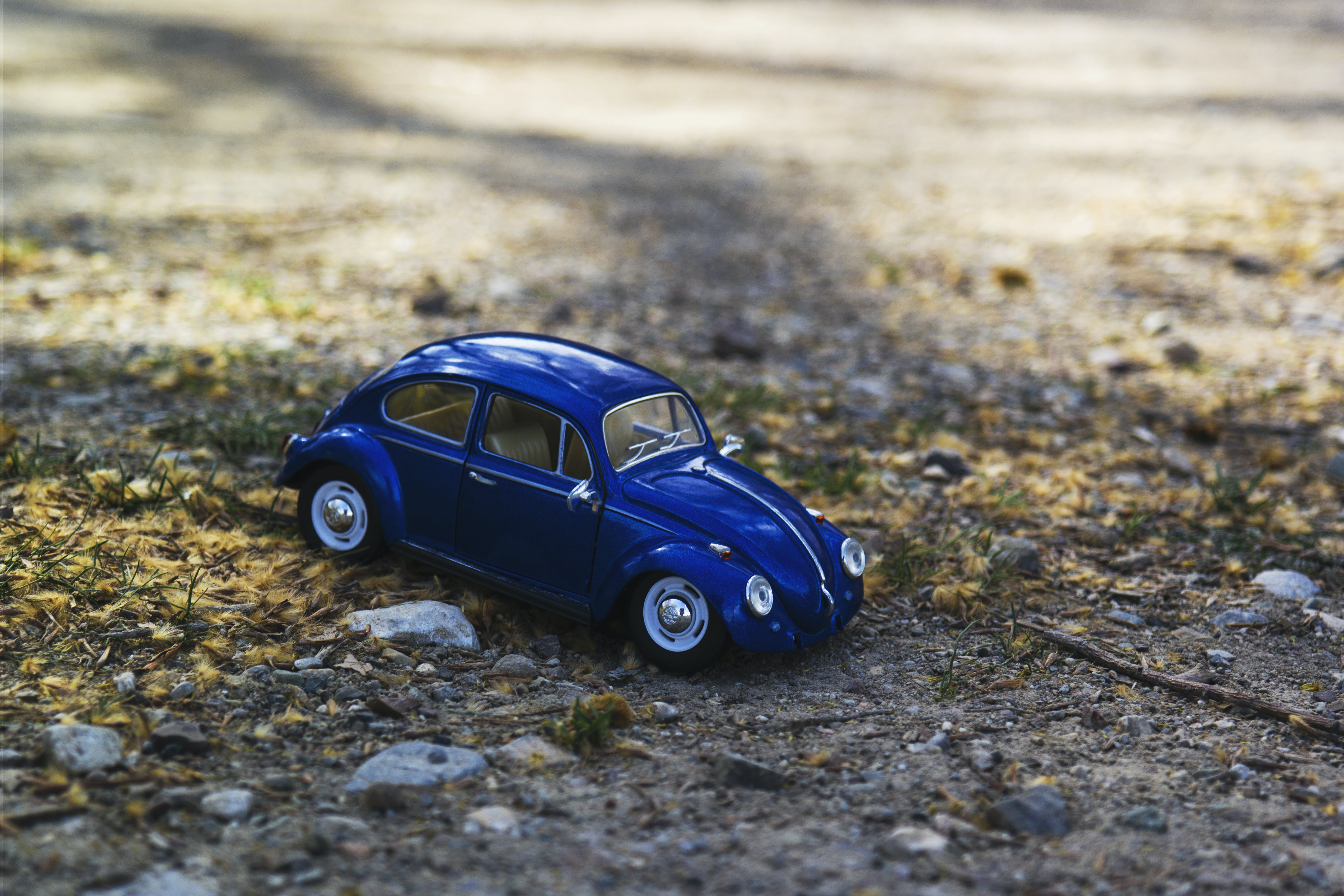 Blue Beetle Car on Yellow and Green Grass