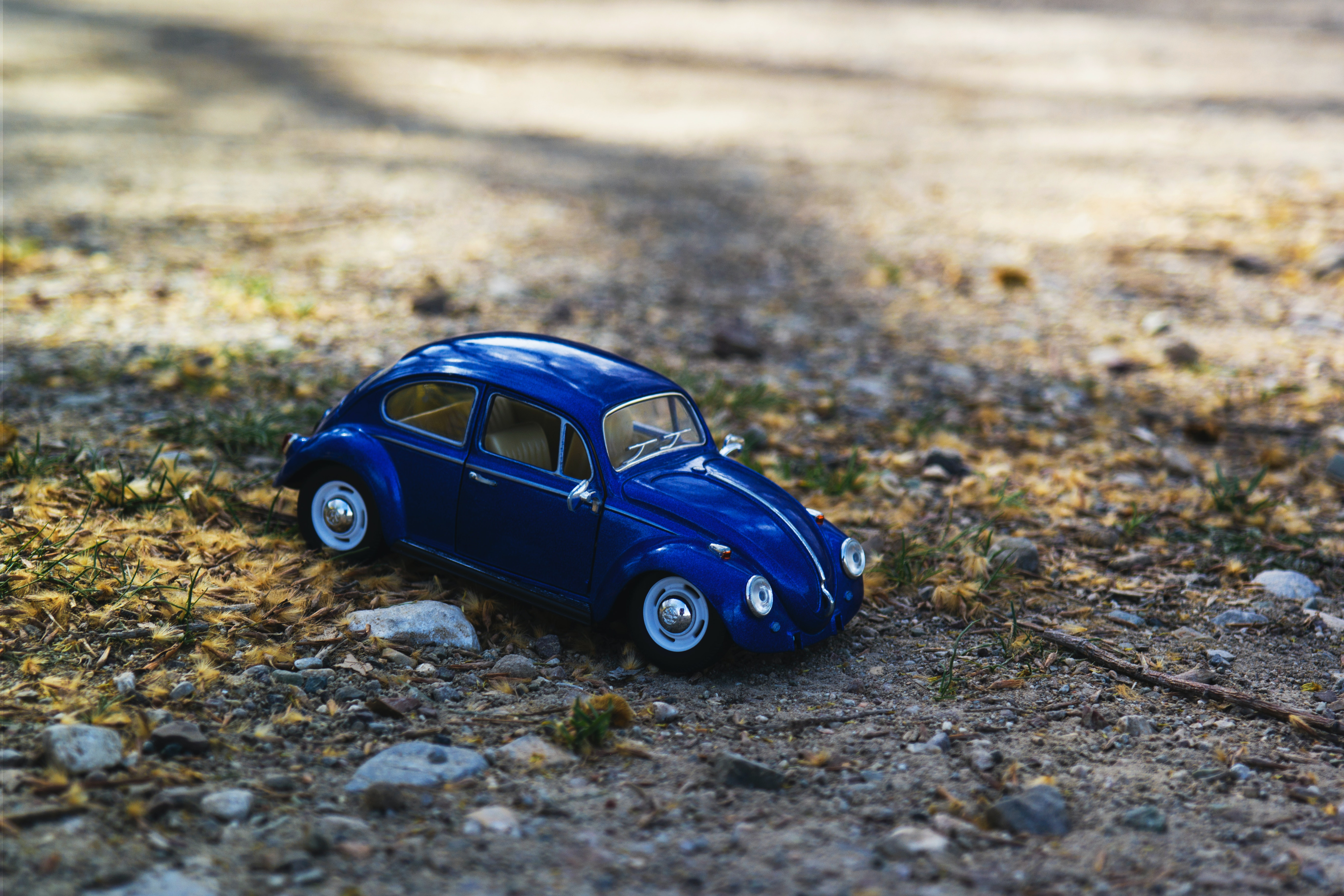 Free Stock Photo Of Beetle Car Macro Photography