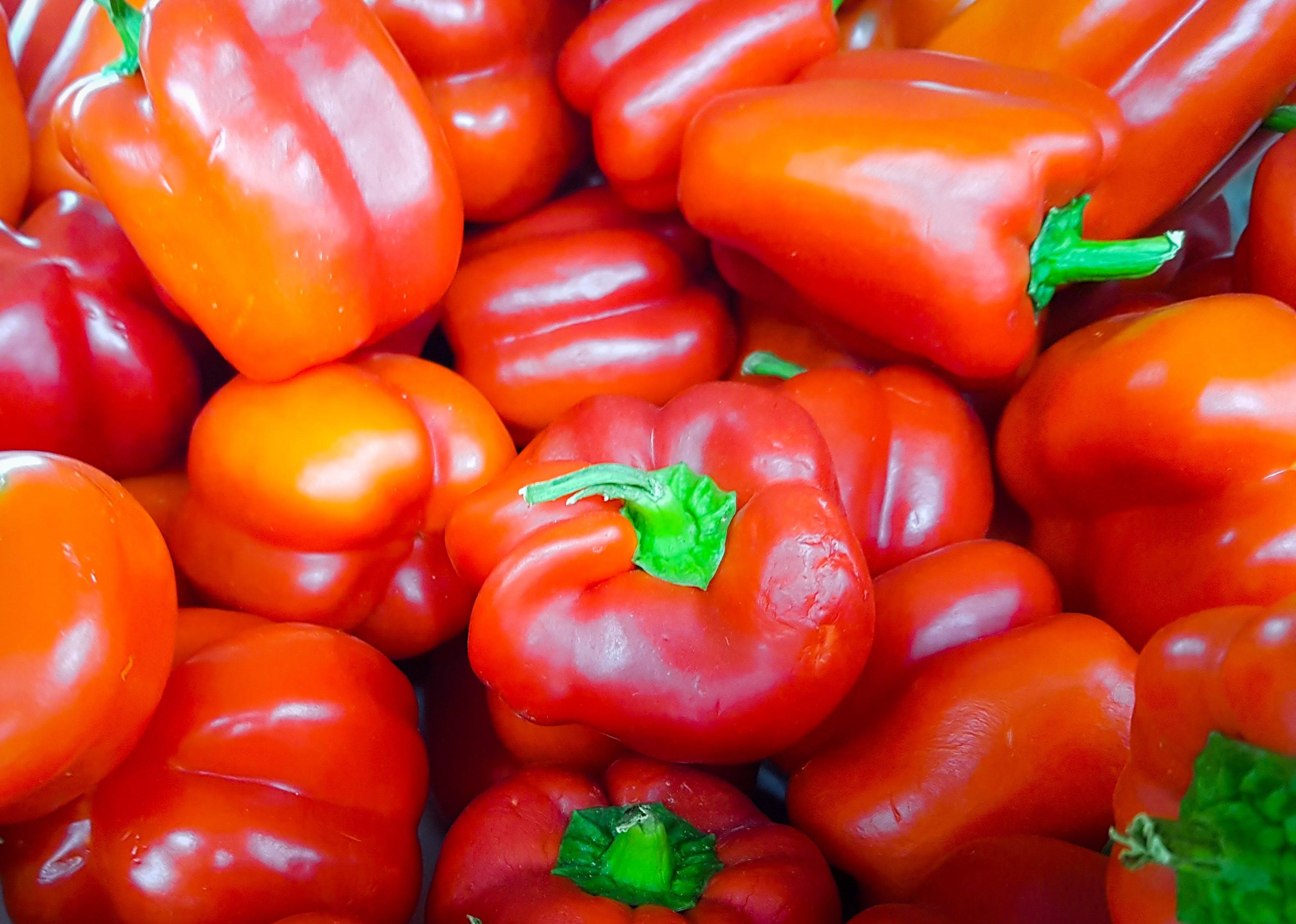 Kostenloses Stock Foto zu chili, heiß, peperoni, rot