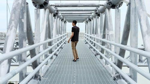 Základová fotografie zdarma na téma architekt, architektonický, architektura, most