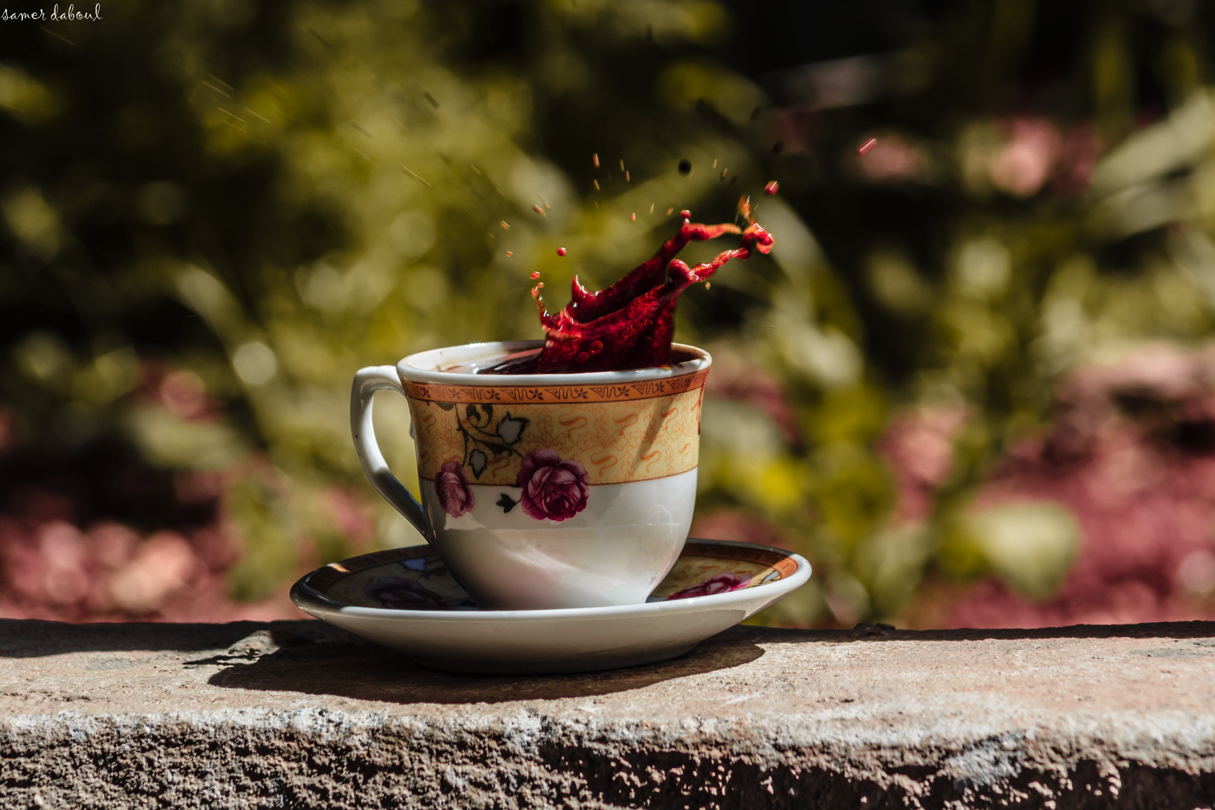 Free stock photo of 500px, black coffee, canon, coffee