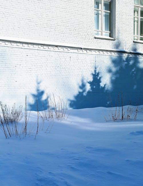 gölgeler, kar, kış içeren Ücretsiz stok fotoğraf
