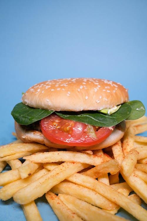 Gratis lagerfoto af appetitligt, blå baggrund, blad