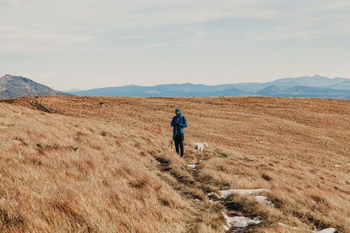 Anonymous traveler in warm clothes with loyal dog standing on hill slope covered with dry grass during hiking trip in mountainous countryside under cloudy sky
