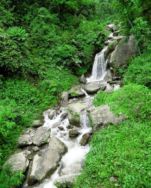 Gratis lagerfoto af et smukt lille vandfald