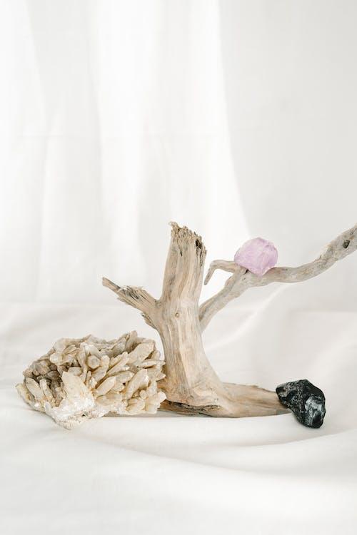 Darmowe zdjęcie z galerii z agat, alternatywa, alternatywny