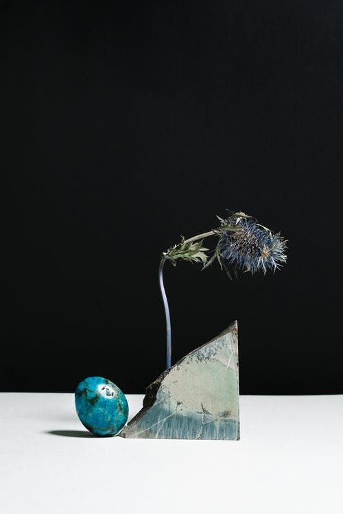 Natural rough stones and dry Eryngium composed against black background