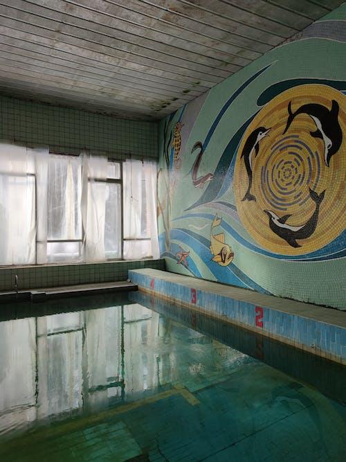 Blue and Yellow Fish Graffiti