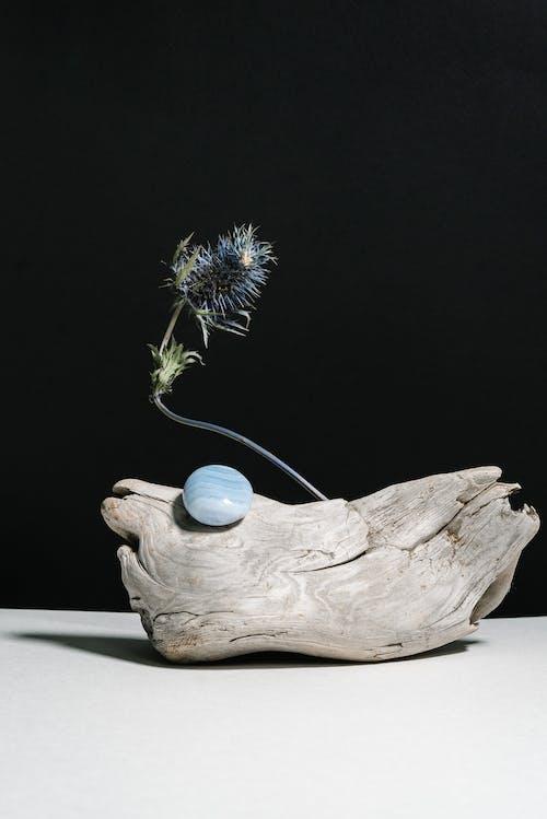 Free stock photo of agate, alternative, alternative medicine
