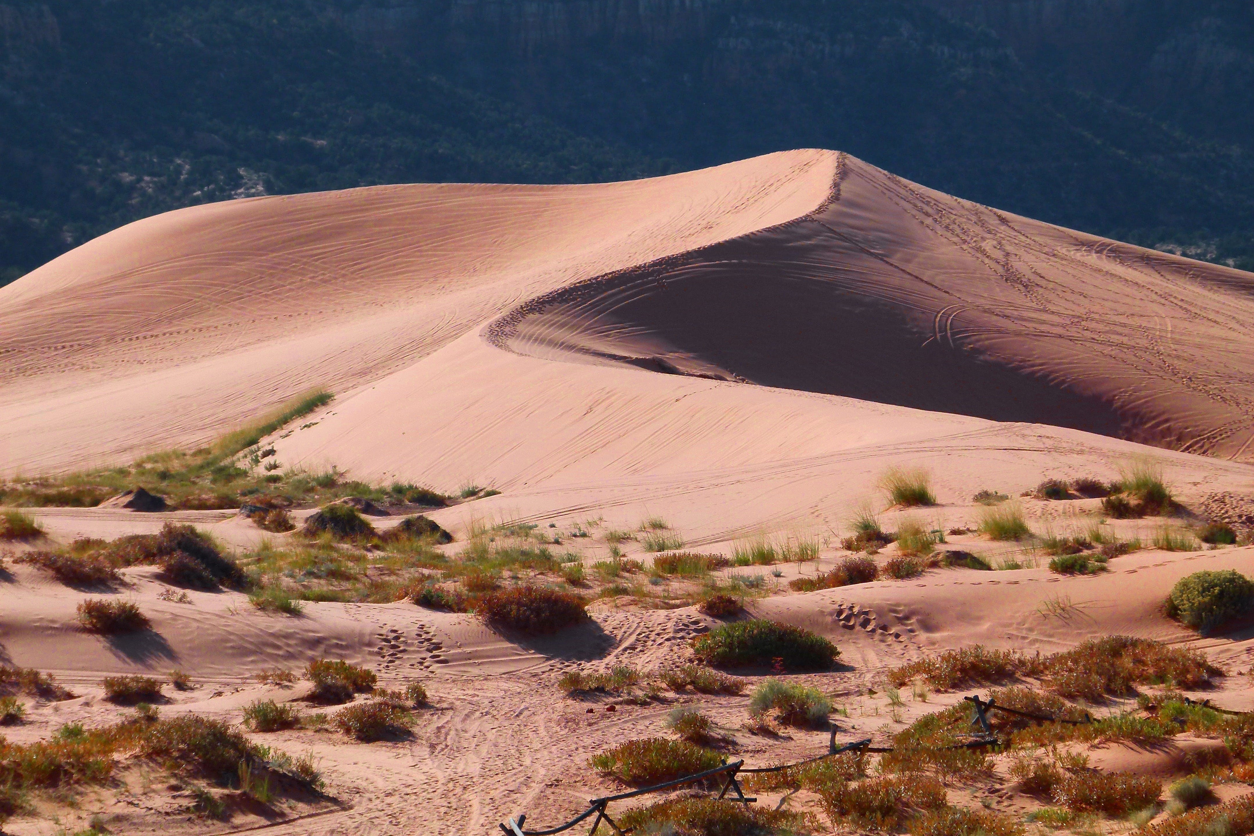 Kostenloses Stock Foto zu dünen, natur, sand, trocken