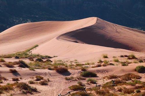 Foto stok gratis alam, gersang, gurun pasir, pasir