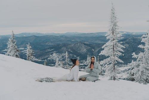 Fotos de stock gratuitas de al aire libre, alma, árbol