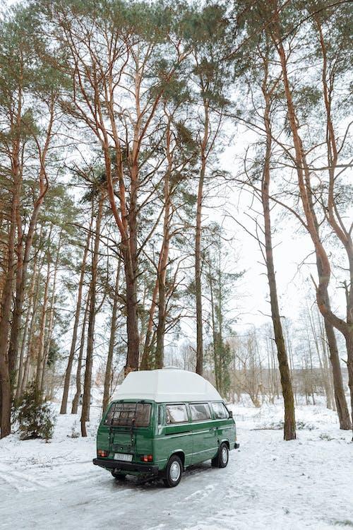 Using a Camper Van in a Camping Trip