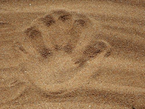 Δωρεάν στοκ φωτογραφιών με άμμος, αποτύπωμα, γκρο πλαν, καφέ