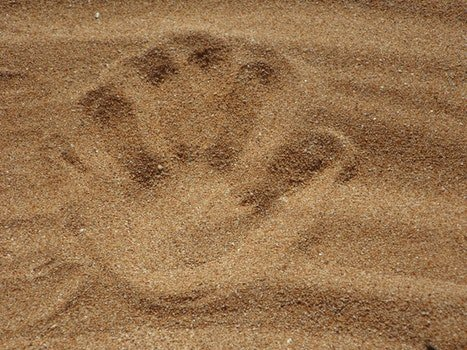 Palm Print on Sand