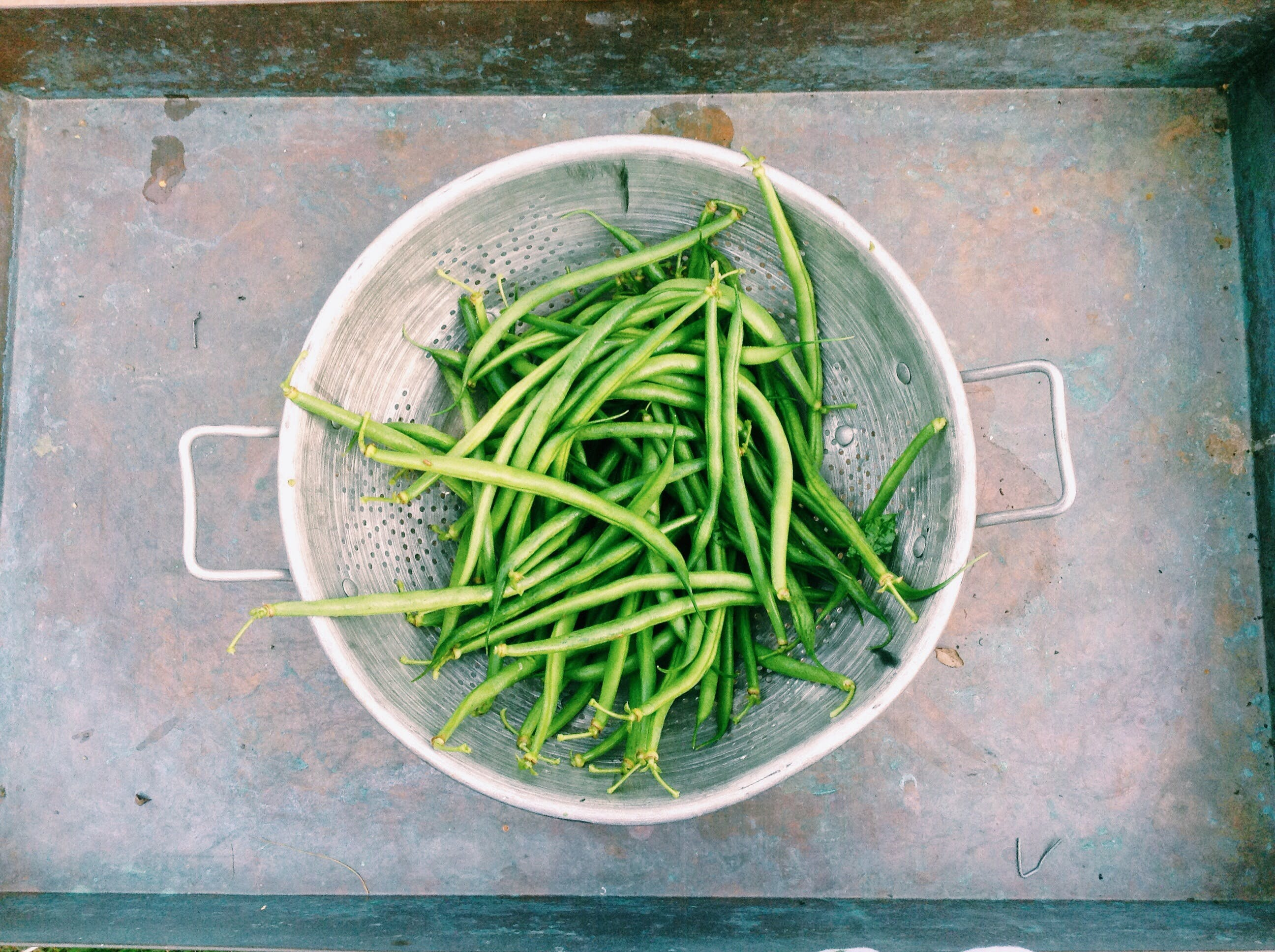 Green String Beans on Stainless Steel Strainer