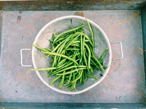 Free stock photo of food, healthy, beans