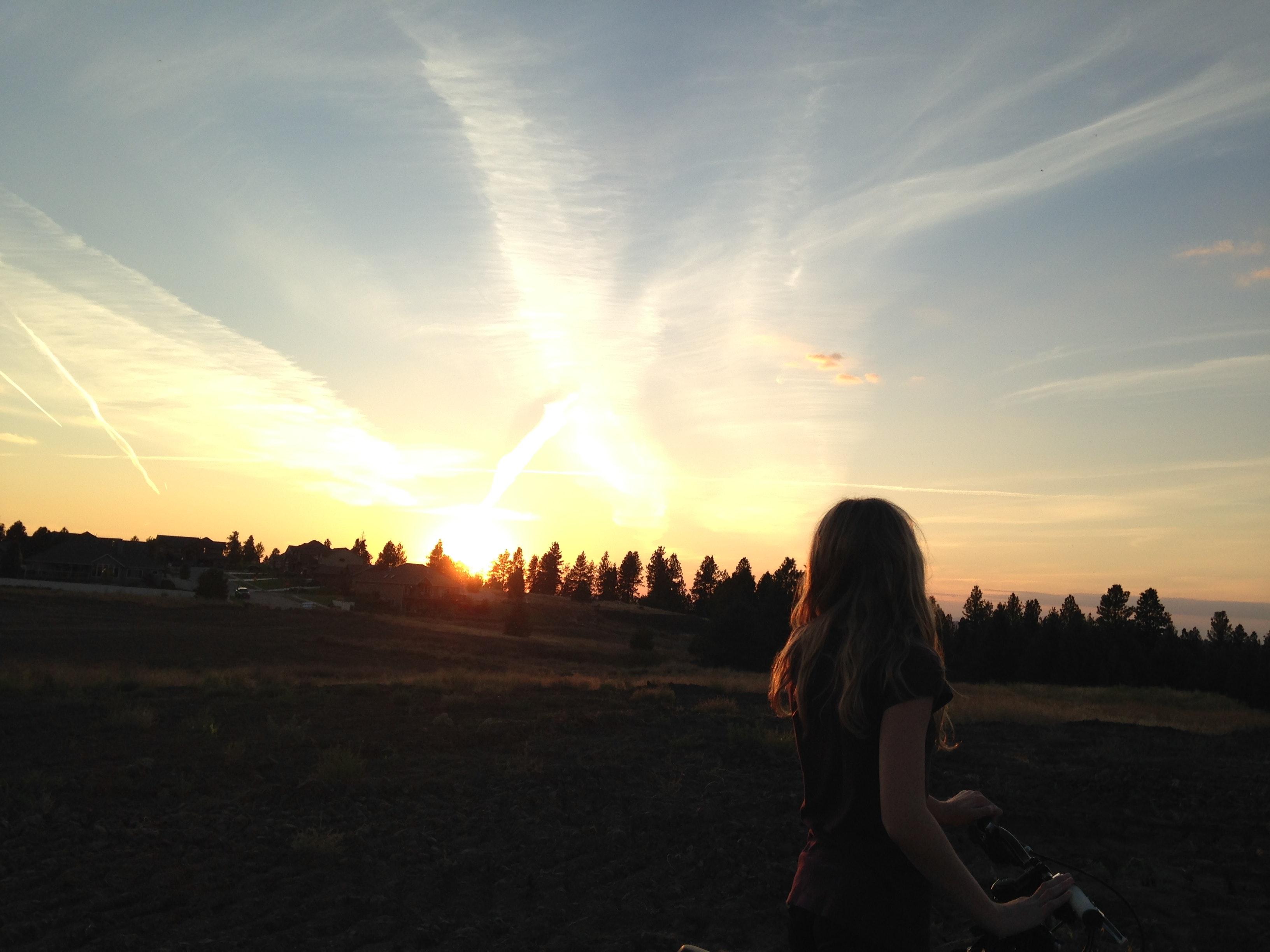 free stock photo of landscape nature sunrise