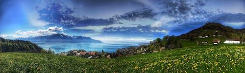 Foto stok gratis awan, bidang, bidang bunga, danau