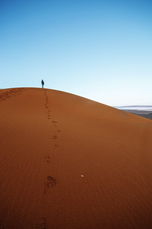Colorful scenery of sandy desert against blue cloudless sky with traces of unrecognizable traveler on orange sand on daytime