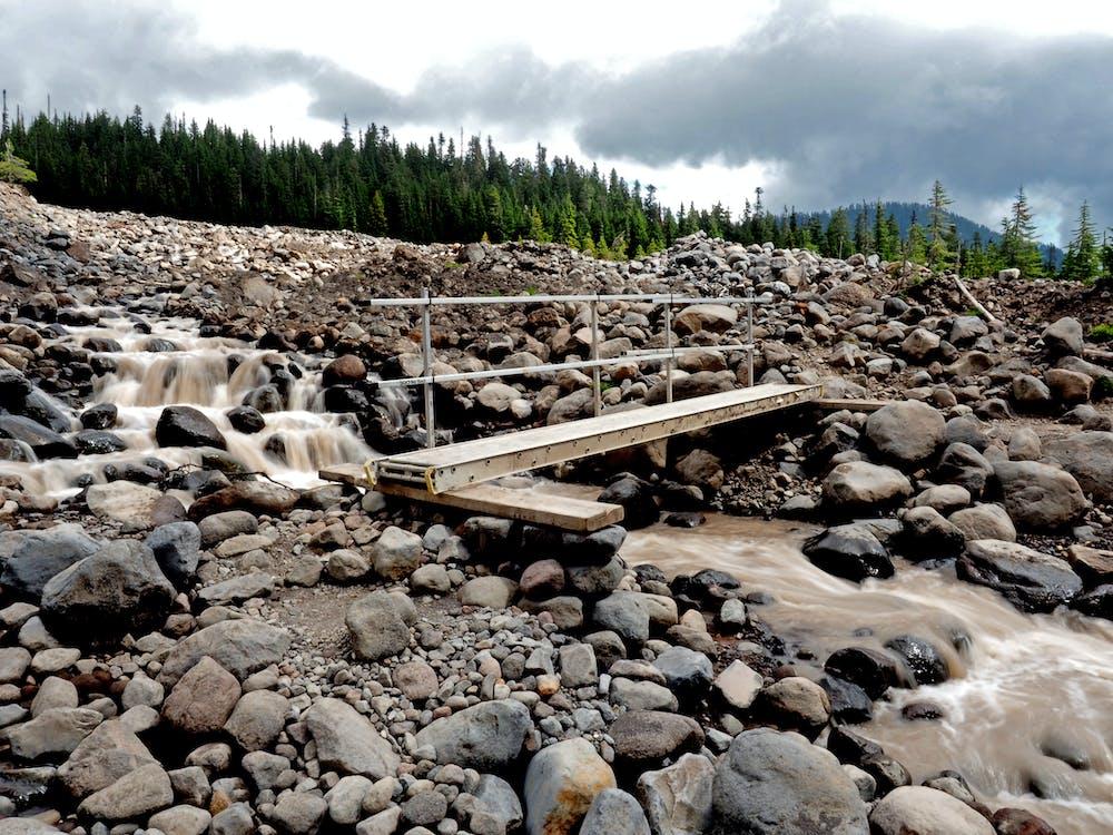 Free stock photo of bridge, forest, hike