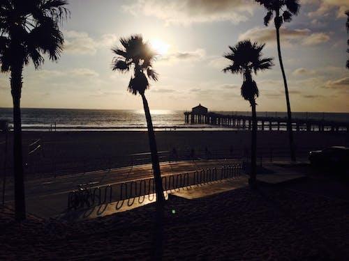 Δωρεάν στοκ φωτογραφιών με Los Angeles, αποβάθρα, δύση του ηλίου, καλοκαίρι
