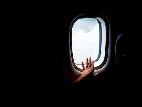Gratis lagerfoto af fly, flyve, hånd, i hele verden