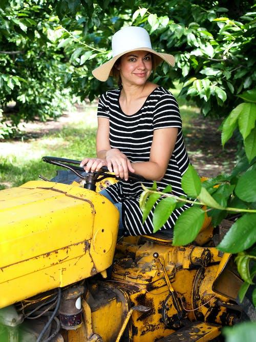 Gratis lagerfoto af frugthave, gård, gratis, kjole
