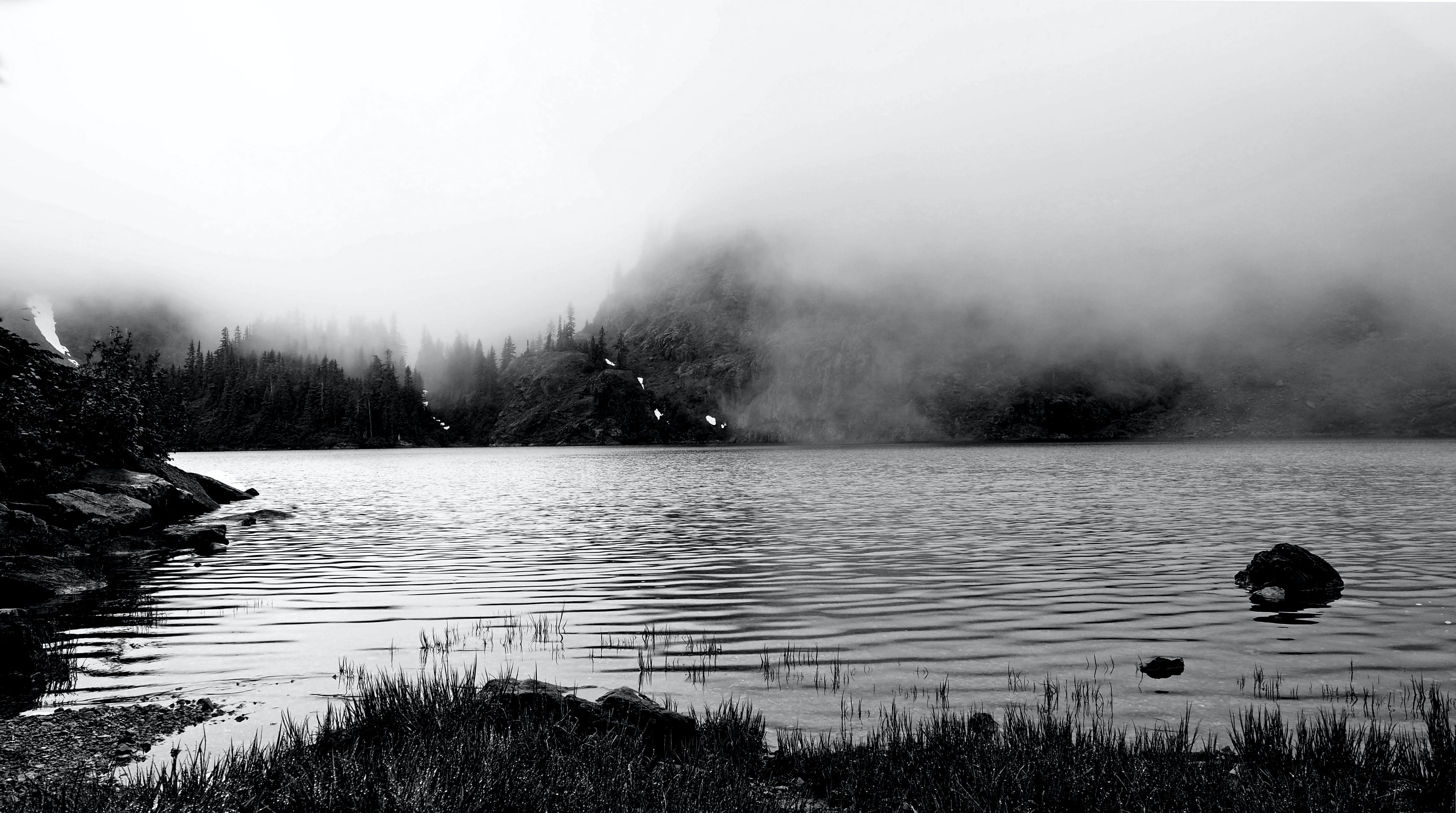 Darmowe zdjęcie z galerii z czarno-biały, drzewa, góra, krajobraz