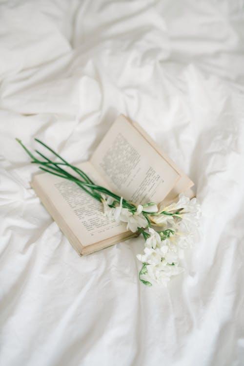 Бесплатное стоковое фото с атлас, белое постельное белье, бумага