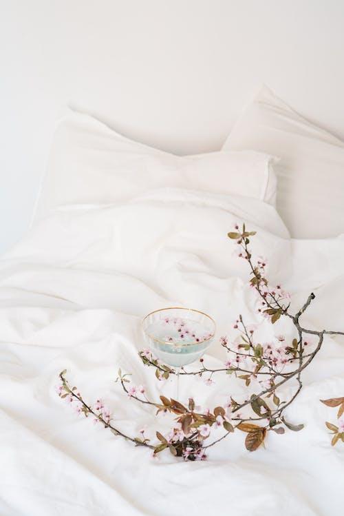 Бесплатное стоковое фото с белое постельное белье, в помещении, весна
