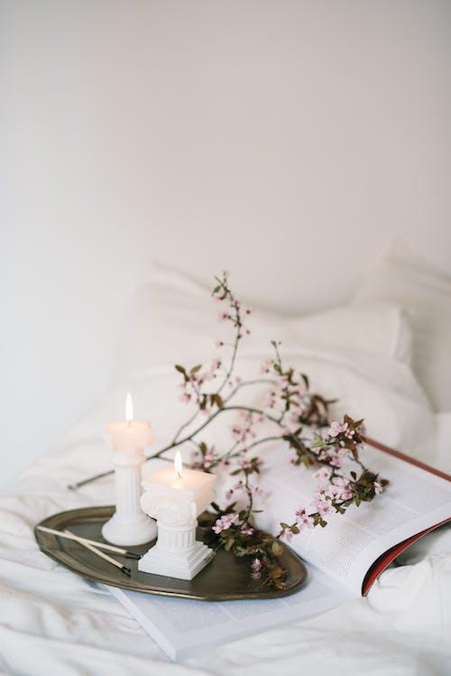Бесплатное стоковое фото с белое постельное белье, в помещении, ваза