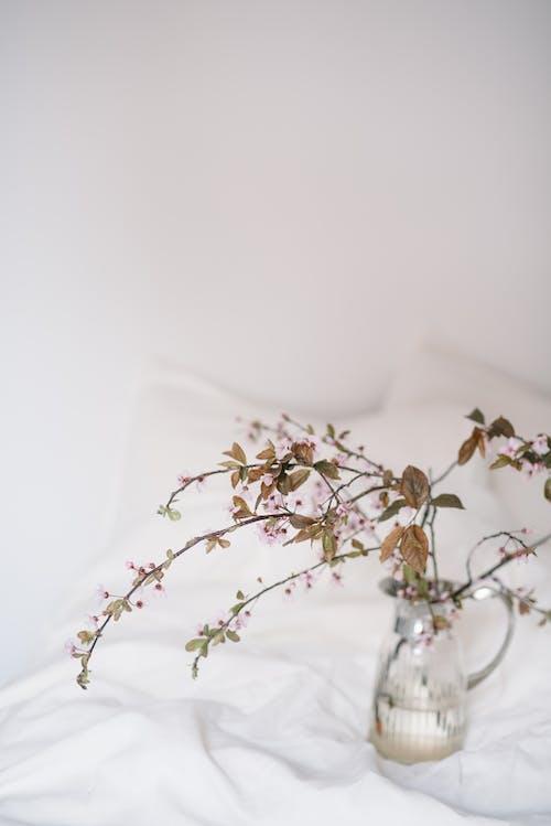 Бесплатное стоковое фото с белое постельное белье, ваза, весна