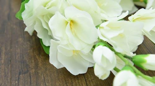 Бесплатное стоковое фото с бутафория, искусственные цветы, красивые цветы