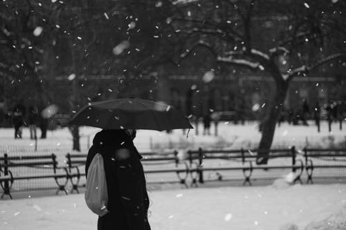 Black and white side view of anonymous person with umbrella in outerwear strolling on street covered with snow during snowfall