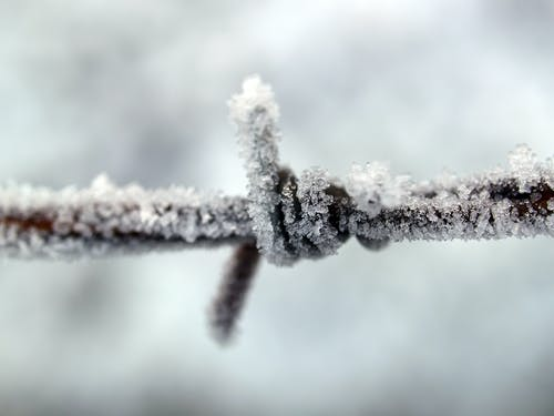 Closeup Photography of Ice Covered Metal Wire