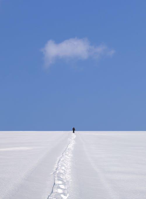 감기, 걷고 있는, 겨울, 계절의 무료 스톡 사진