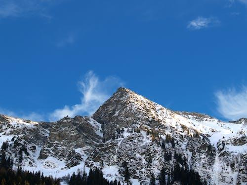 겨울, 그레이, 눈, 바탕화면의 무료 스톡 사진