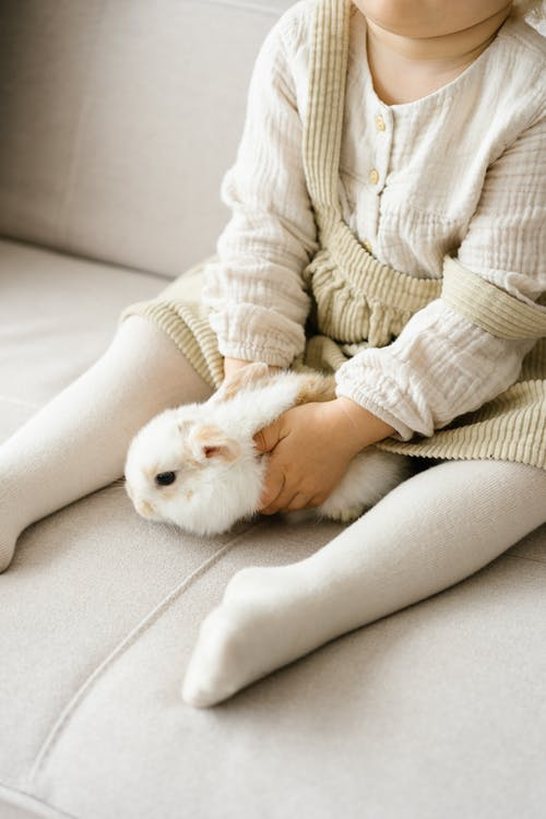 Small girl sitting with cute rabbit on sofa
