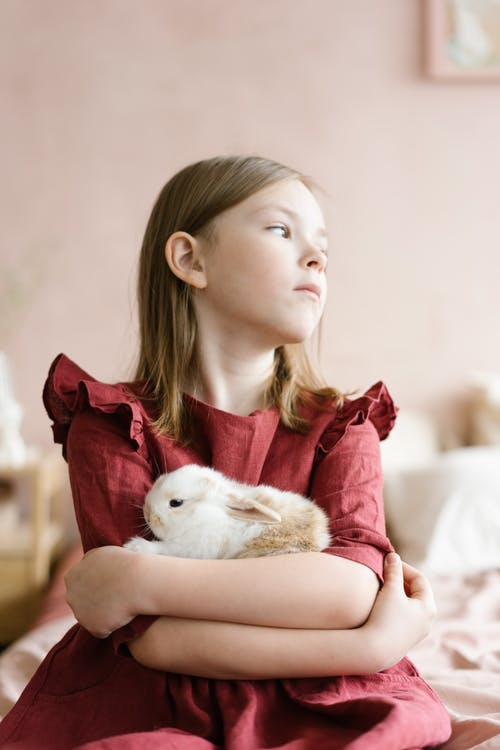 Cute girl with white rabbit in arms
