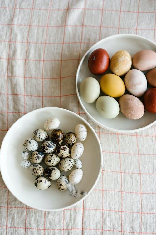 가벼운, 건강한, 계란의 무료 스톡 사진