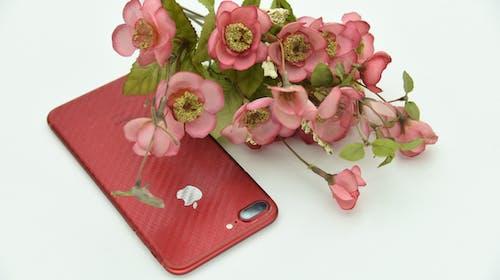 Δωρεάν στοκ φωτογραφιών με iphone 7, props, ψεύτικα λουλούδια
