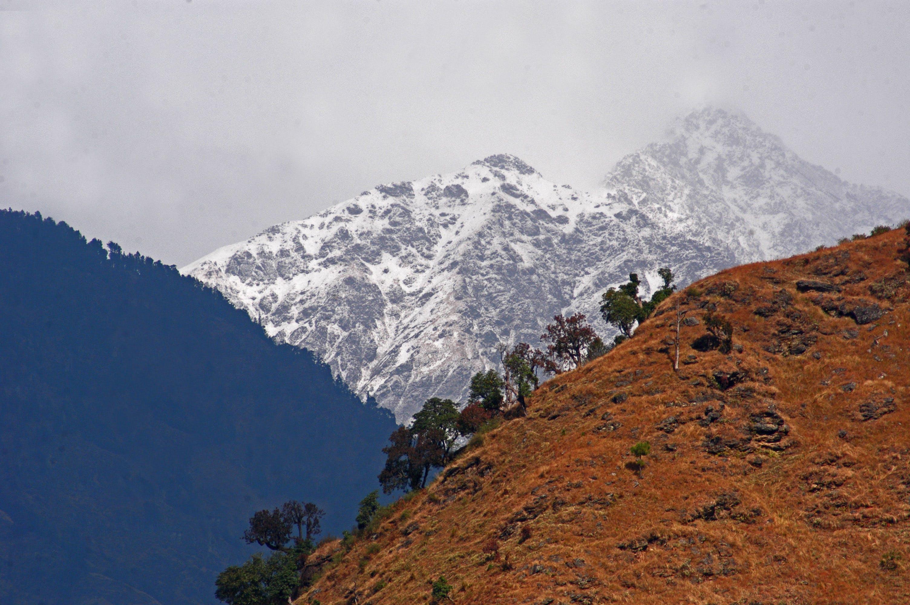 Free stock photo of autumn color, Fallwinter, himalayas, india