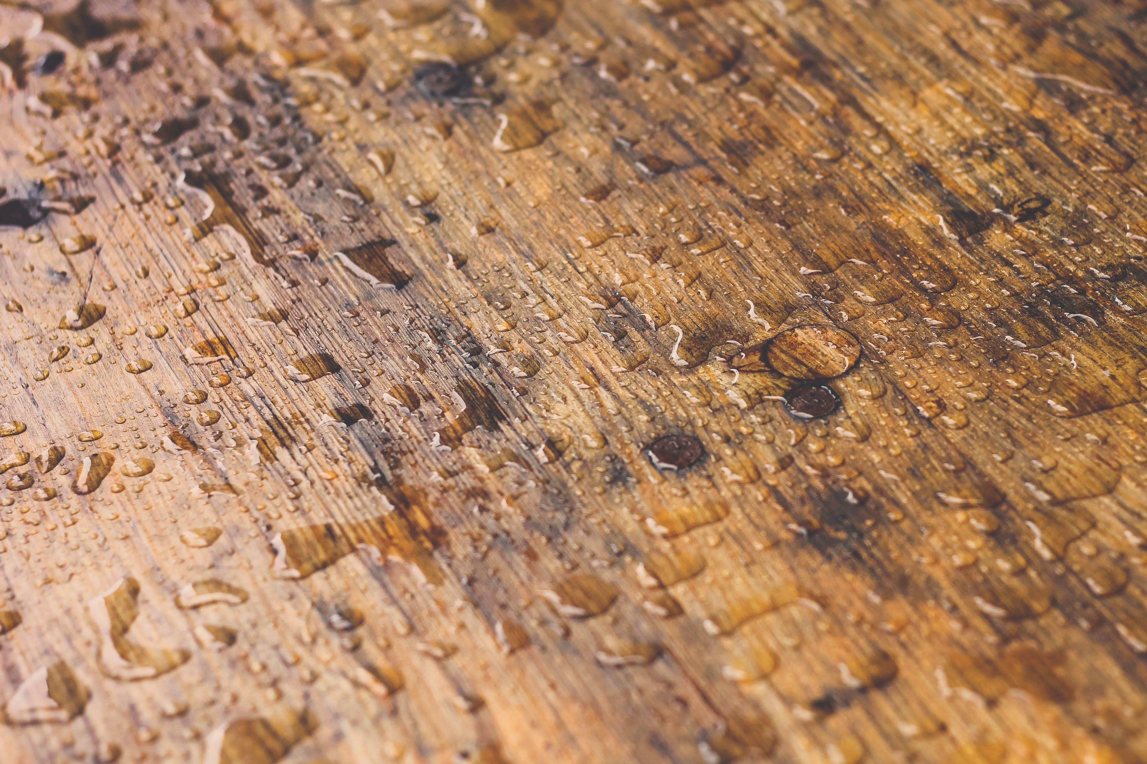 Wet Brown Wood